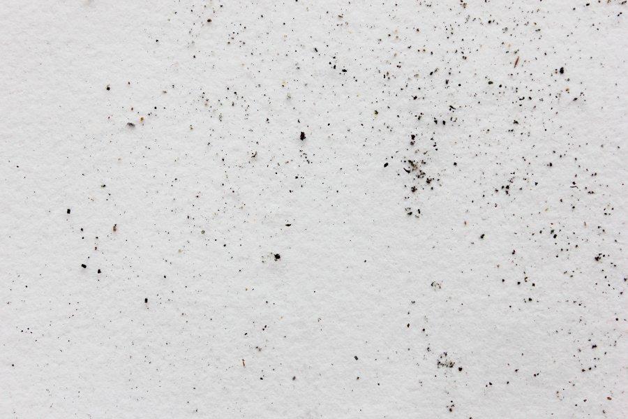 Collection de poussières