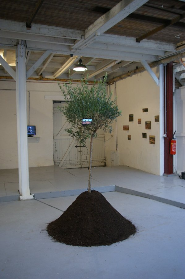 Une place sur la terre / 2008